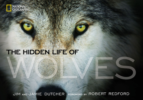 Hidden Life of Wolves cover