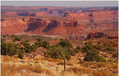 Fiddler Butte in Utah, one of the wild lands that would remain vulnerable with passage of the wild lands rider. (© Courtesy of Ray Bloxham, & Southern Utah Wilderness Alliance)