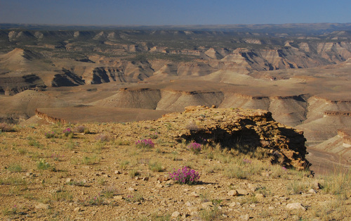 Desolation Canyon proposed wilderness area 2.jpg