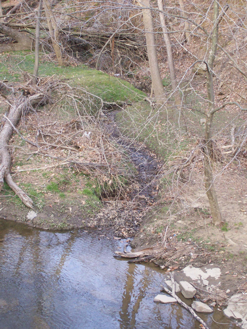 photo of channel leading to Four Mile Run, a tributary of the Potomac River