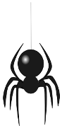 spider_4.png