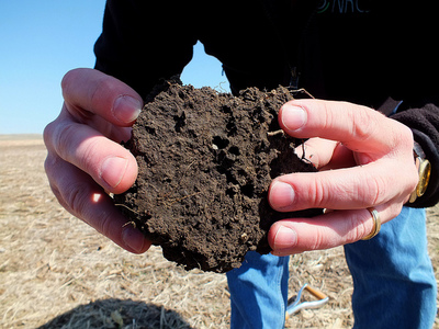 healthy soil pores NRCS flickr.jpg