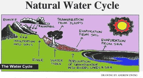 1024px-Natural_water_cycle_1.jpg