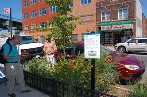 """""""enhanced tree pit"""" captures roadway runoff in NYC"""
