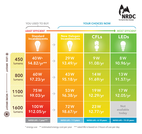 buyers' guide to energy-efficient lightbulbs