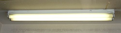 800px-Fluorescent_light_strip_2_tube.jpg
