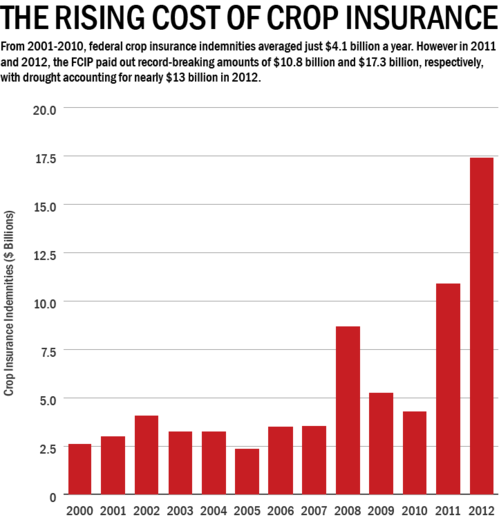 crop loss graph.png
