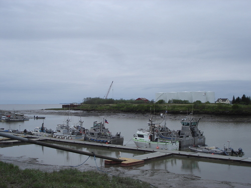 Thumbnail image for Alaska 2011 (8) (Boats in dillingham).jpg