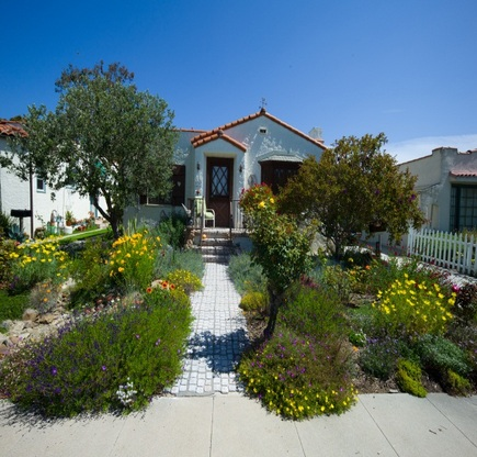 Thumbnail image for drought tolerant.jpg