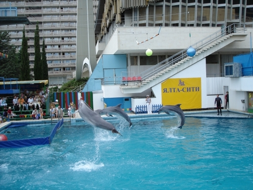 Yalta_Dolphinarium Wanderer777 for Creative Commons.JPG