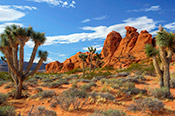 Photo of Gold Butte in Nevada