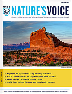 Natures Voice: Spring 2018 issue cover