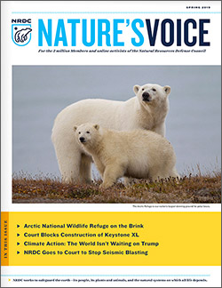 Natures Voice: Spring 2019 issue cover