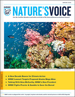 Natures Voice: Spring 2020 issue cover