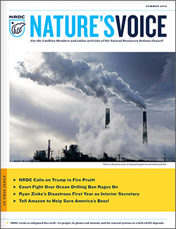 Natures Voice: Summer 2018 issue cover