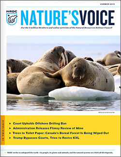 Natures Voice: Summer 2019 issue cover