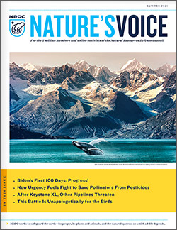 Natures Voice: Summer  2021 issue cover