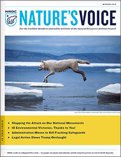 Natures Voice: Winter 2018 issue cover
