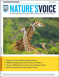 Natures Voice: Winter 2019 issue cover