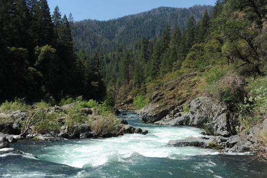 McCloud River Above Shasta Reservoir