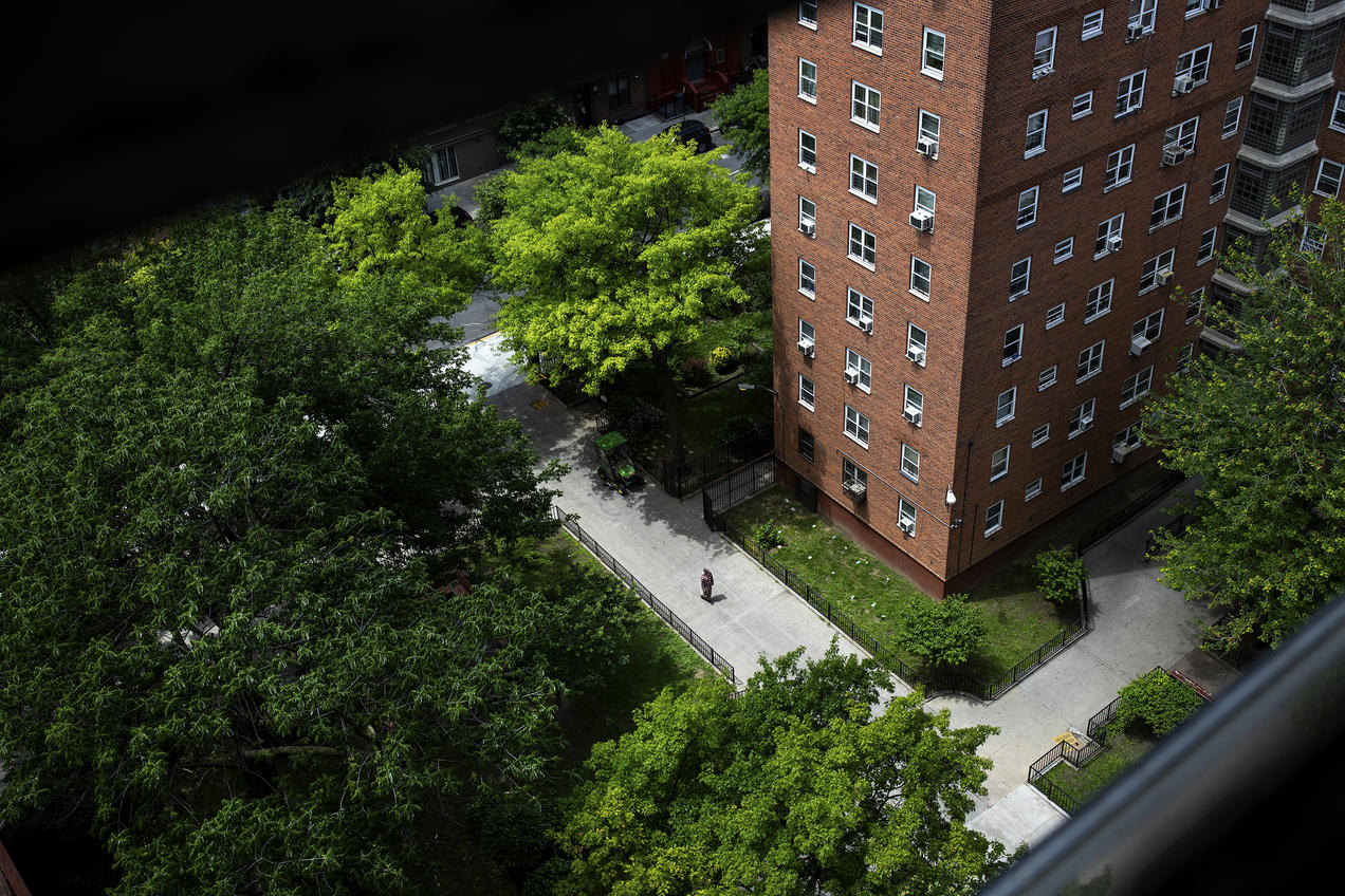 Inside NYC's Public Housing, Mold and Neglect Are a