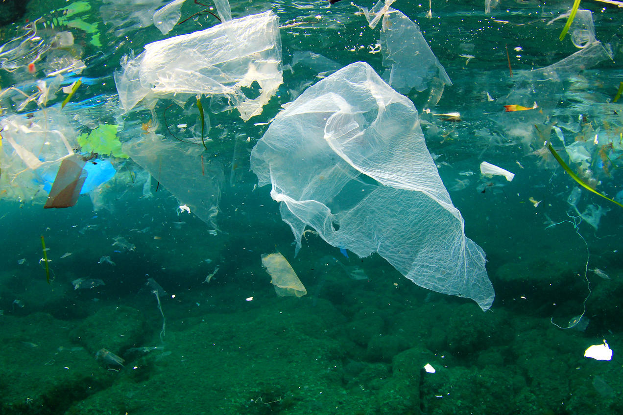 Image result for plastic bag in US rivers