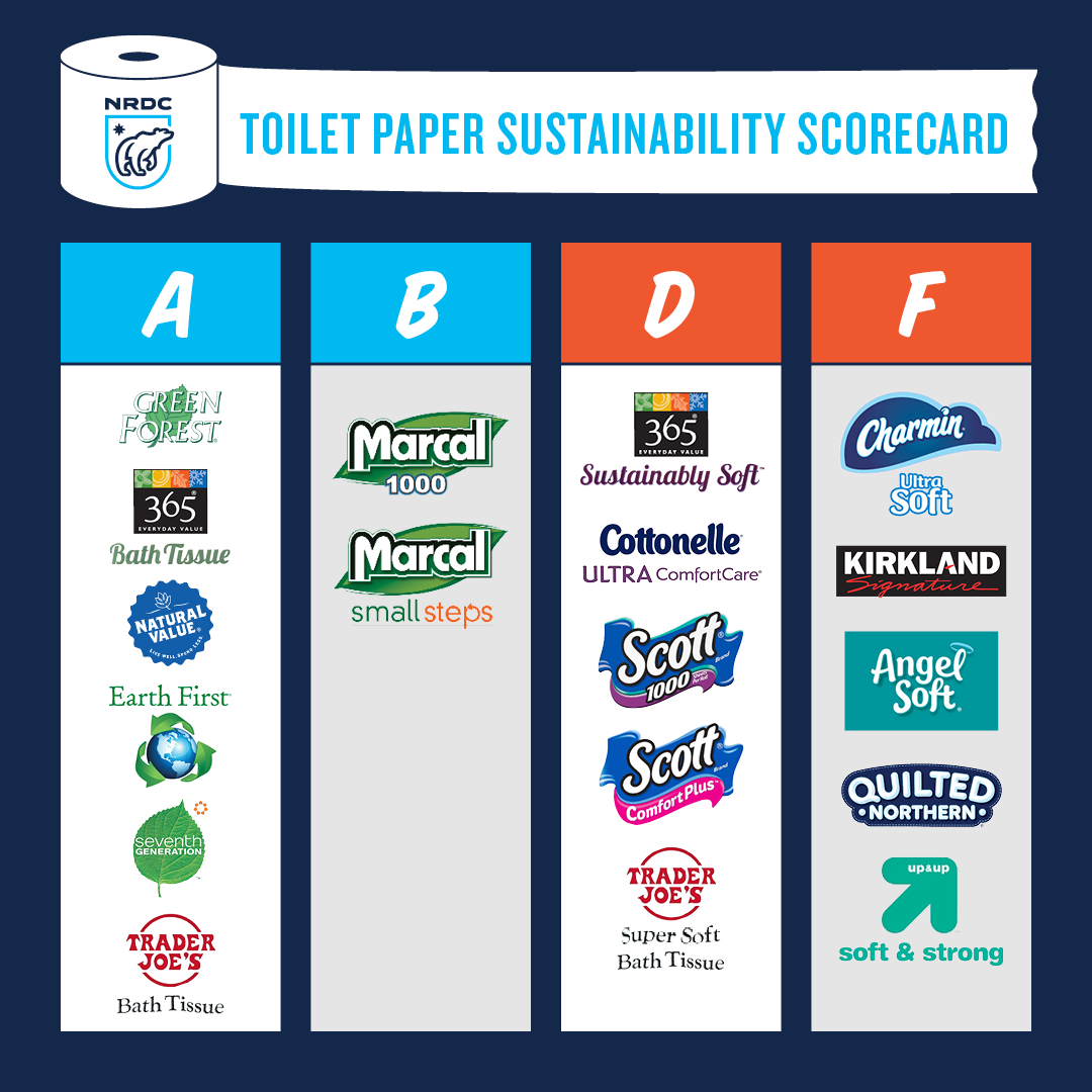 Toilet paper sustainability
