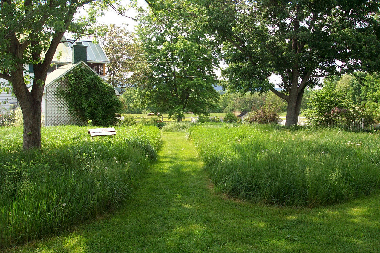More Sustainable And Beautiful Alternatives To A Grass Lawn Nrdc