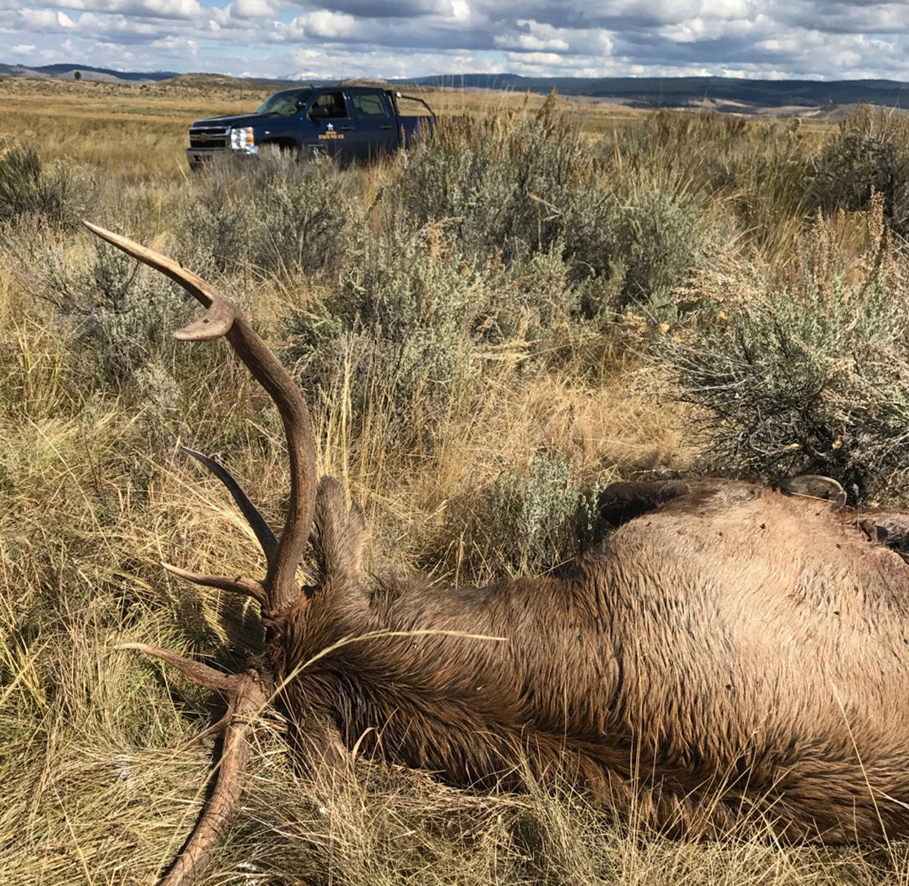 Oregon Has a Poaching Problem—and a Force to Reckon With It | NRDC