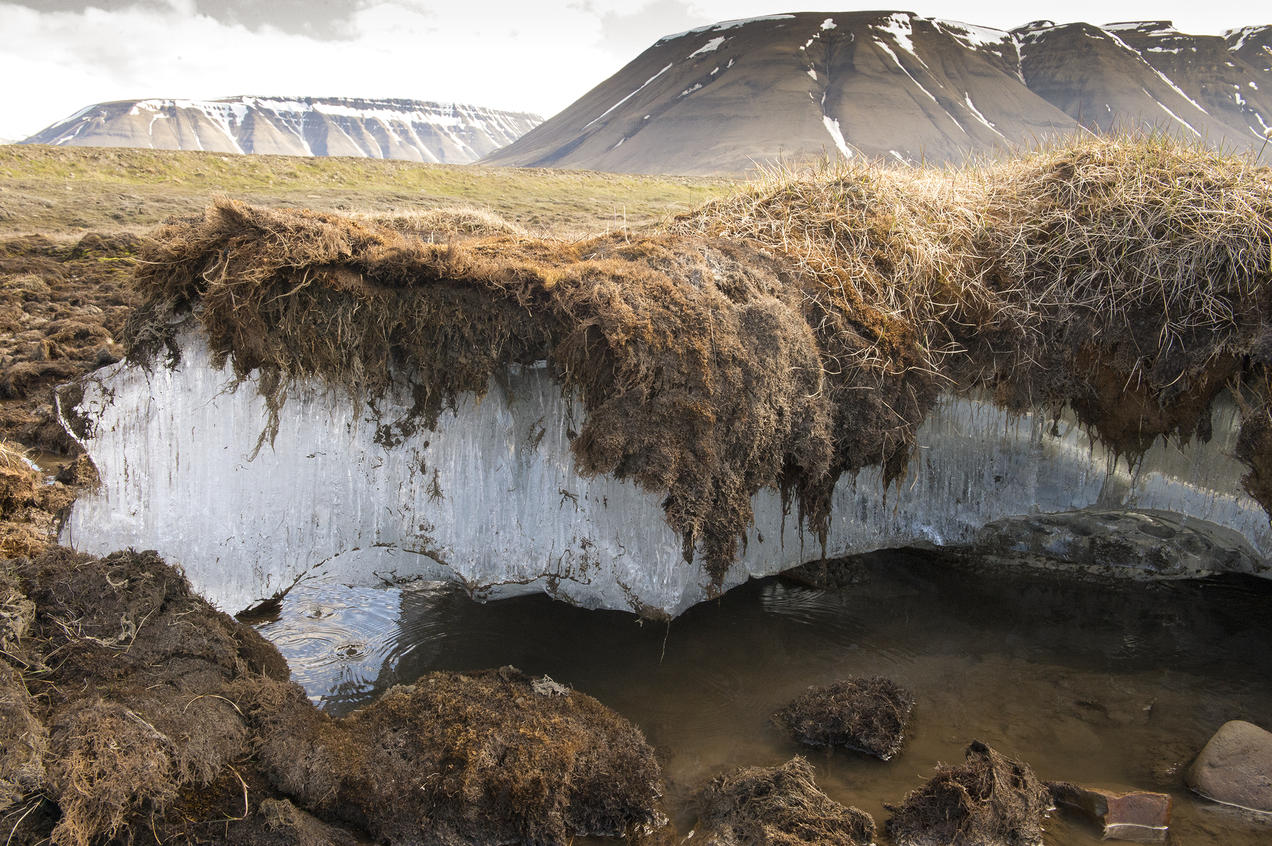Permafrost: Everything You Need to Know | NRDC