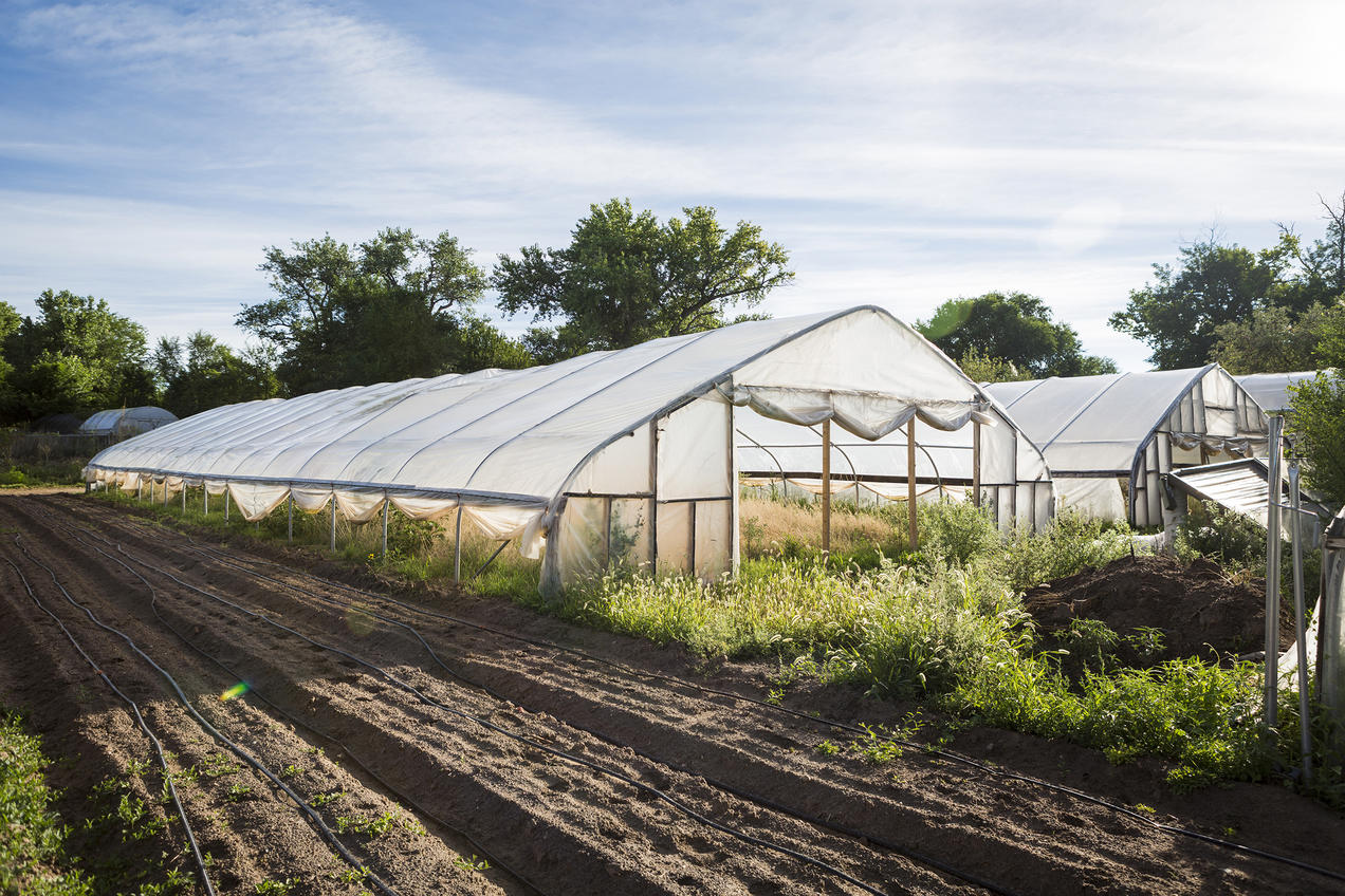 Farms on the Fringe: New Takes on America's Farming Tradition | NRDC