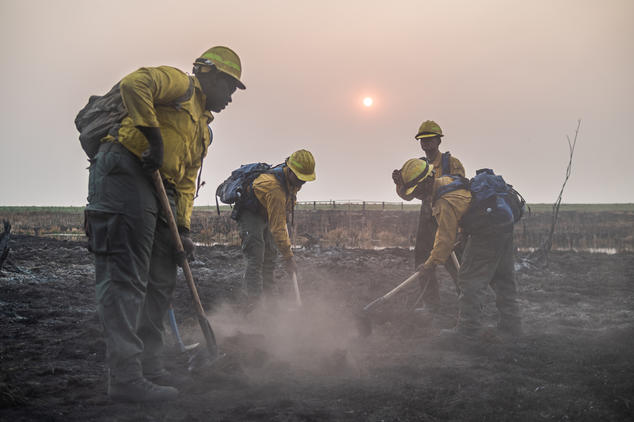 Four firefighters dig in ash-covered ground in front of a hazy landscape.