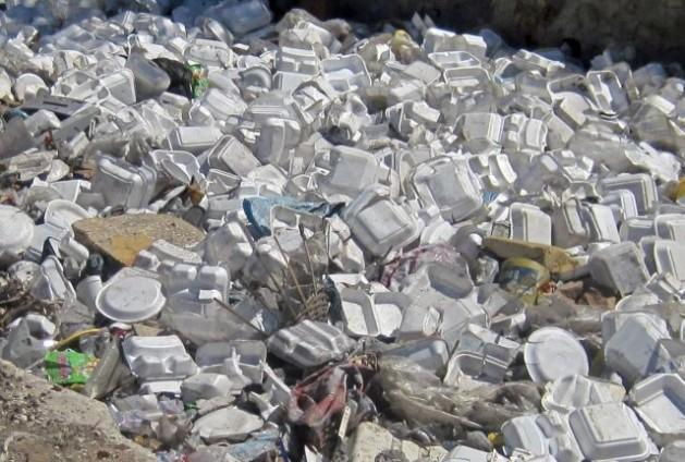 Polystyrene foam food and beverage containers contribute disproportionately to street litter and waterway pollution. These containers cannot be cost effectively recycled.