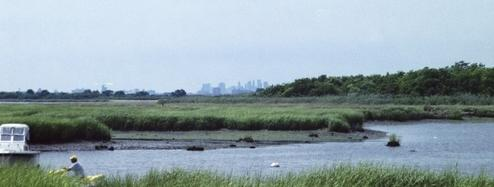 Jamaica Bay Manhattan Skyline