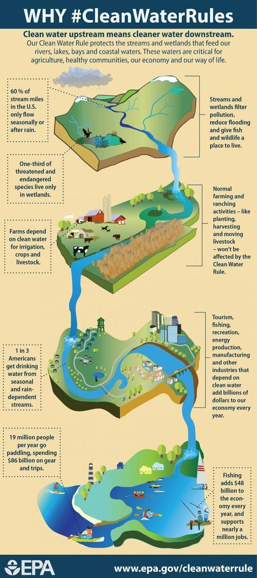Why #CleanWaterRules Infographic