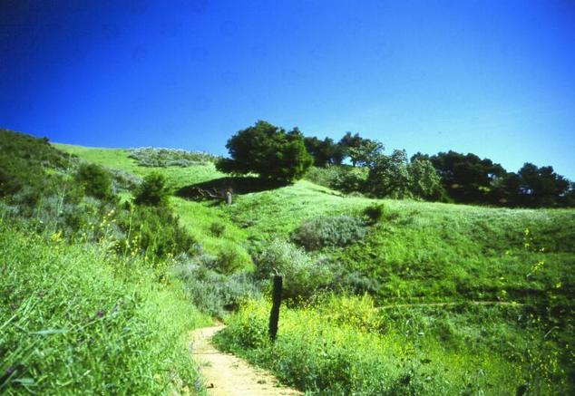 Upper Las Virgenes Canyon Open Space Preserve (formerly Ahmanson Ranch)