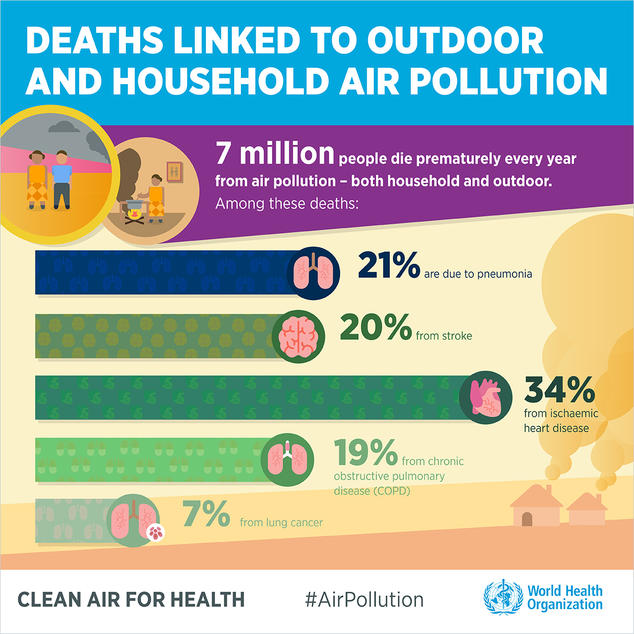 Infographic outlining deaths linked to air pollution