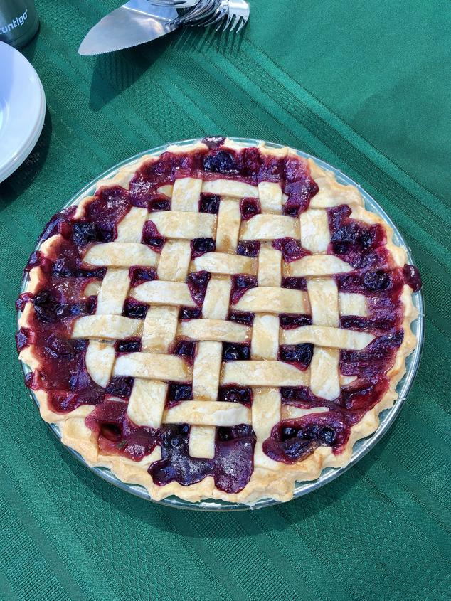 A mouth watering grape pie