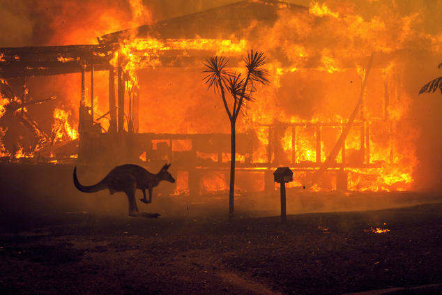 Australia Is Burning. Jakarta Is Drowning. Welcome to 2020.