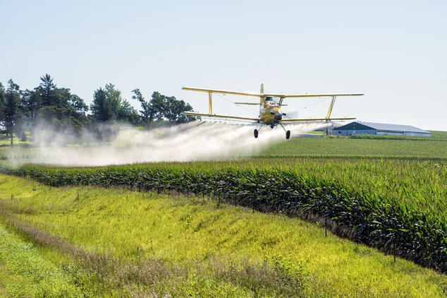2,4-D Weed Killer Toxicity, Use in Herbicides and Potential