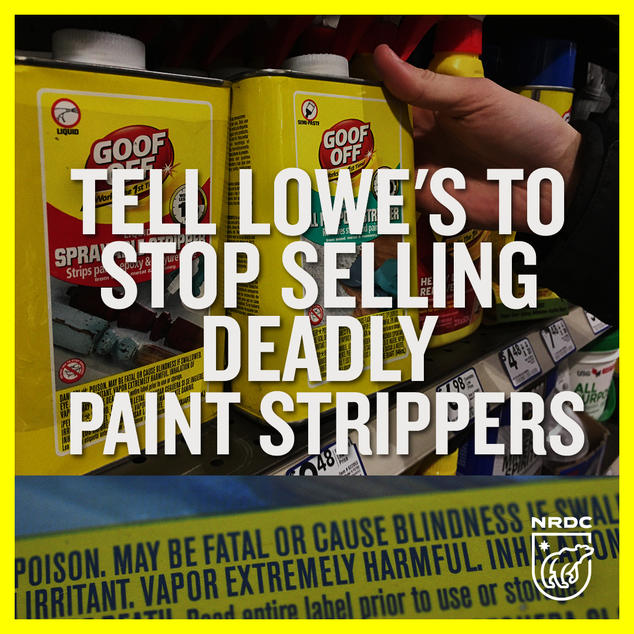 ed34bd3caa Needless Deaths  Toxic Solvents in Paint Strippers