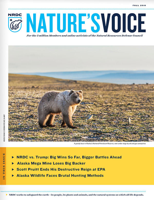Nature's Voice - Fall 2018 Issue