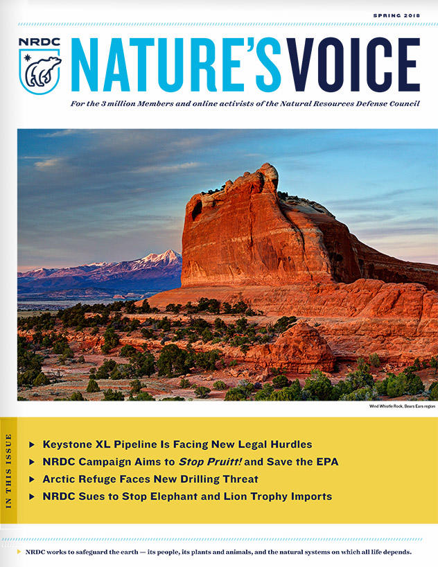 Nature's Voice - Spring 2018 Issue