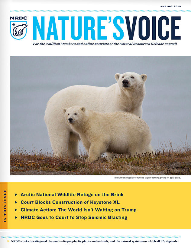 Nature's Voice - Spring 2019 Issue Cover