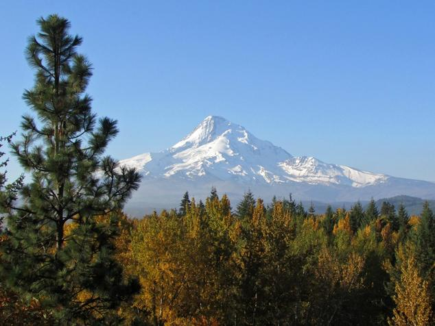 Oregon Poised (Again) to Cap Carbon Pollution