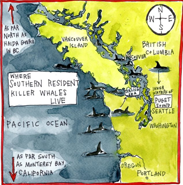 Southern Resident orcas home range