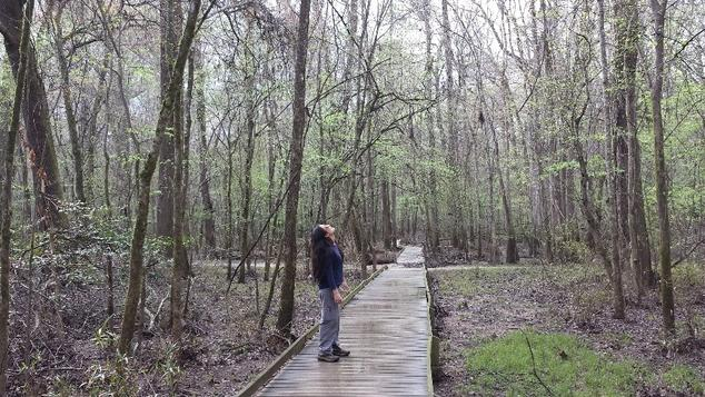 Author at Congaree National Park, SC