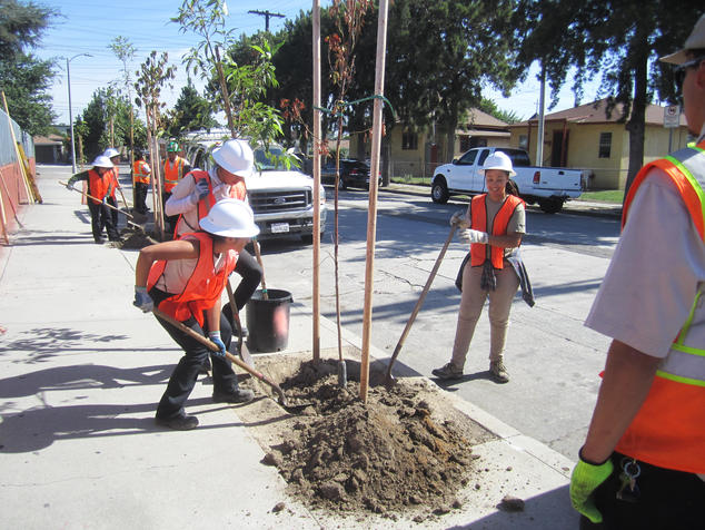 children planting trees in Los Angeles