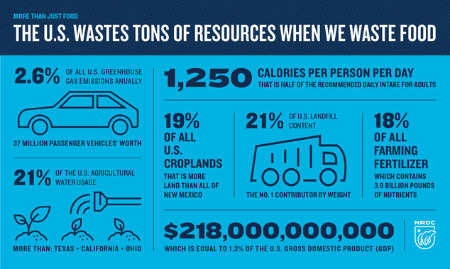 Wasted food wastes resources. 2 percent of US ghgs. 1250 calories per person per day. 19 percent of US cropland. 21 percent of landfill content. 18 percent of farming fertilizers. 21 percent of ag water. 218 billion dollars.
