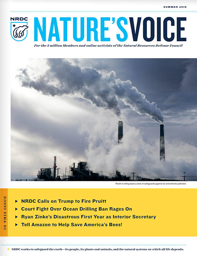 Nature's Voice - Summer 2018 Issue